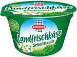 BILLA Schärdinger Landfrischkäse Schnittlauch