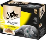 BILLA Sheba Delikatesse in Gelee Geflügel Variation 12er