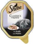 BILLA Sheba Classics in Pastete mit Kalb & Huhn