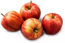 Da komm ich her! Gala Apfel gelegt aus Österreich