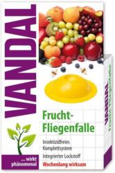 Vandal Fruchtfliegenfalle