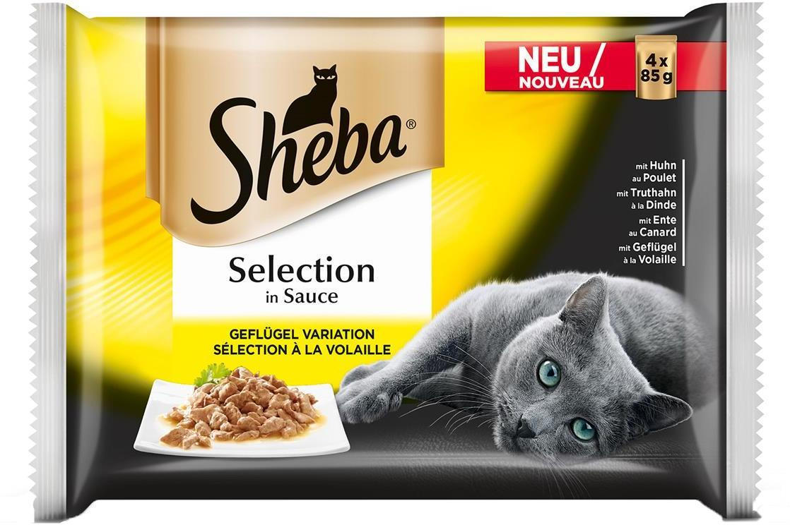 Sheba Im Angebot