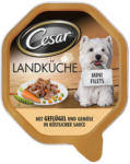BILLA Cesar Landküche Geflügel & Gemüse