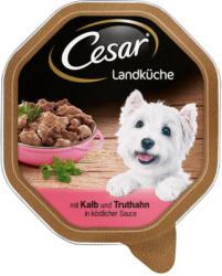 Cesar Landküche mit Kalb & Truthahn in köstlicher Sauce