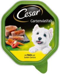 Cesar Gartenvielfalt mit Huhn & buntem Gemüse