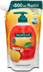dm Palmolive Hygiene-Plus Flüssigseife family Nachfüllbeutel