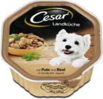 dm Cesar Landküche Hundefutter Pute & Rind in Sauce
