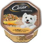 dm Cesar Landküche Hundefutter mit Geflügel & Gemüse in Sauce