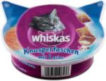 dm whiskas Knuspertaschen mit Lachs Katzensnack