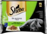 dm Sheba Delikatesse Katzenfutter Feine Vielfalt in Gelee