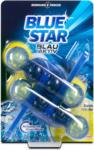dm Blue Star Blau-Aktiv WC-Reiniger Zitrus-Frische