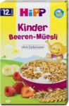 dm Hipp Kinder Beeren-Müesli