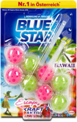 Blue Star Kraft-Aktiv WC-Reiniger Hawaii Escapes