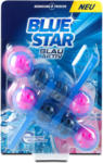 dm Blue Star Blau-Aktiv WC-Spüler Blüten Frische