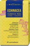 dm the wellness co. Echinacea Isländisch Moos Lutschtabletten