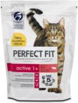 dm Perfect Fit active 1+ Katzenfutter reich an Rind