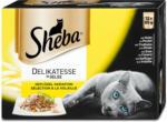 dm Sheba Katzenfutter Delikatesse in Gelee Geflügel Variationen