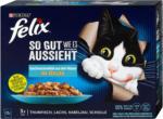 dm felix So gut wie es aussieht Katzenfutter Fischauswahl in Gelee