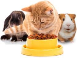 -25% auf Tiernahrung & -pflege