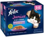 BILLA Felix Junior Fleisch 12er