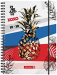 "PAGRO DISKONT Schülerkalender ""Pineapple"" A5 bunt 2019/2020"