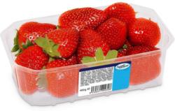 SanLucar Erdbeeren aus Deutschland
