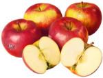 BILLA Ja! Natürlich Bio Topaz Apfel gelegt aus Österreich