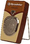 Saturn TRA 255 Tragbarer Radio im Nostalgie Design, braun