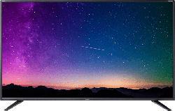 Fernseher 4T-C65BJ2EF2NB (65BJ2E) 65 Zoll 4K UHD Smart TV
