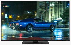 Fernseher TX-43GXW584 43 Zoll UHD 4K Smart TV