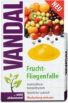 dm Vandal Frucht-Fliegenfalle