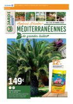 Spécial Plantes Méditerranéennes