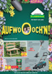 Lagerhaus Lagerhaus Flugblatt - Großfläche Steiermark - gültig bis 29.3. - bis 29.03.2020