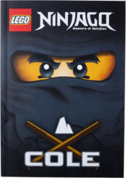 "LEGO Ninjago Buch ""Cole"""