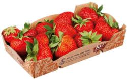 Ja! Natürlich Bio Erdbeeren aus Italien