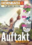 Hornbach Auftakt in den Frühling - bis 31.03.2020