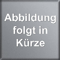 Blucaffé Tin 250gr Bohnen