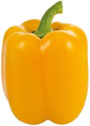 Da komm ich her! Paprika Gelb aus Österreich
