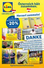 LIDL Flugblatt Flugblatt