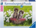 OTTO'S Puzzle Piquenique sur prairie 1000 pièces -
