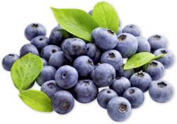 Vitaminreiche Heidelbeeren