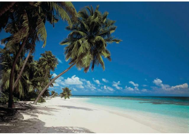 Fototapete Maldives ca. 388 x 270 cm