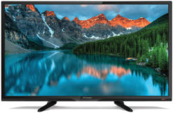 Fernseher SRT 24HB3003 60 cm (24 Zoll) HD LED (HDTV, Triple Tuner, HDMI, USB, Hotelmodus)