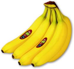 Echt Bio Süße Bananen
