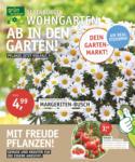 OLDENBURGER WOHNGARTEN GmbH & Co. KG AB IN DEN GARTEN! Pflanze jetzt Vielfalt. - bis 30.04.2020