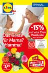 Lidl Österreich Flugblatt - bis 13.05.2020