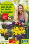 Pflanzen-Kölle Gartencenter Aktuelle Angebote - bis 20.05.2020