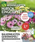 OLDENBURGER WOHNGARTEN GmbH & Co. KG Hübsch eingetopft! - bis 13.05.2020
