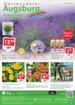 Gartencenter Augsburg Wochenangebote - bis 17.05.2020