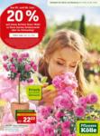 Pflanzen-Kölle Gartencenter Aktuelle Angebote mit 20% Rabatt-Coupon - bis 10.06.2020